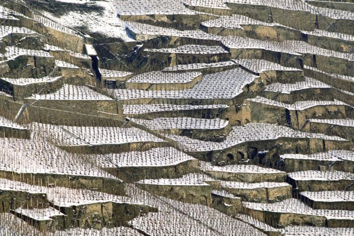 Mosel Wein Terrassen