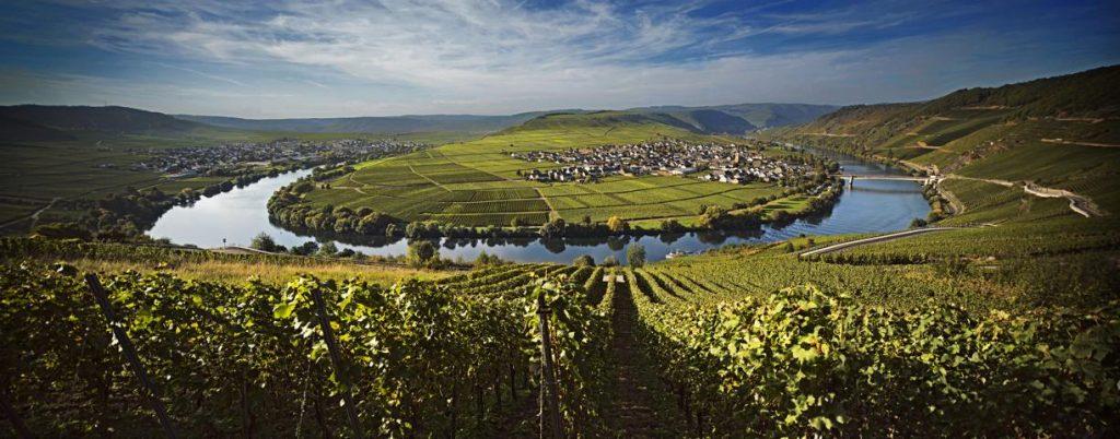 Mosel Weinbaugebiet