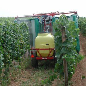 Pestizide Weinbau