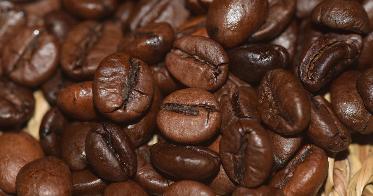 Kaffee Boden Terroir