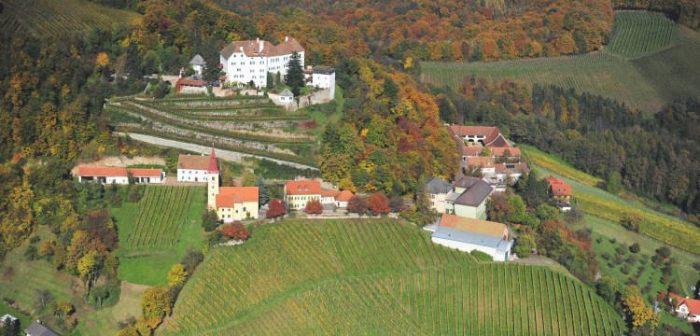 Schloss Kapfenstein Wein österreich