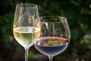 Biowein und der Geschmack
